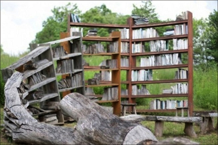 An art piece showing books turning back into petrifeid wood.